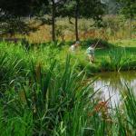 Visites, animations nature d'avril à juin 2013