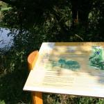Visites, animations nature – Les animations d'automne 2012