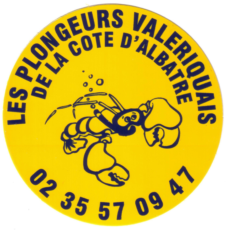 Logo PVCA